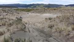Port Waikato Dunes