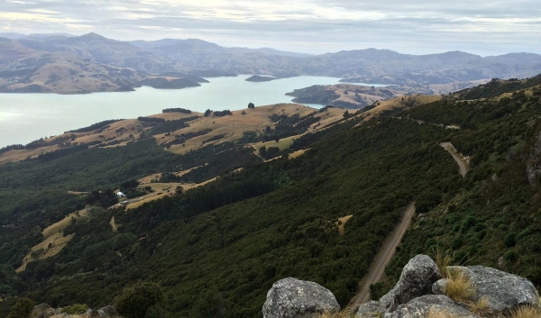 View from Akaroa Lighthouse Road