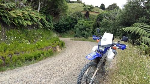 Aotearoa Road