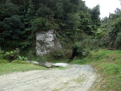 Aotuhia Station farm track