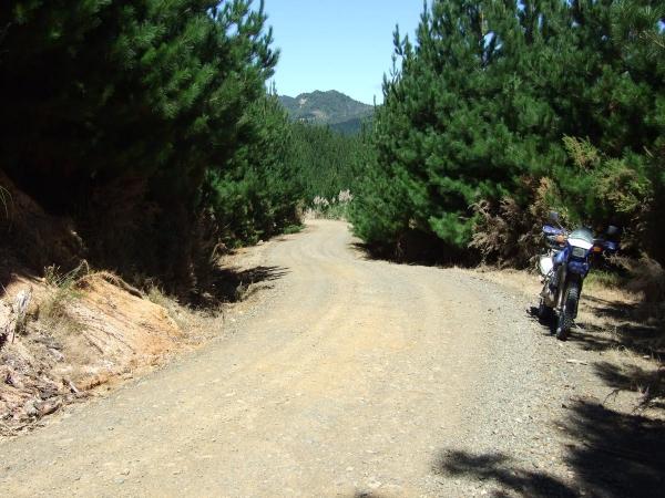 Castlerock Road