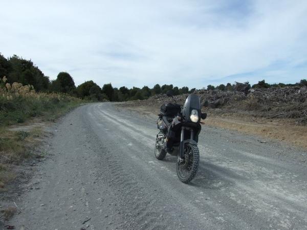 KTM 950 Adventure on Cecil - Leslie logging road.