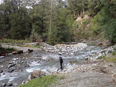 The 2nd stream on Denniston Track