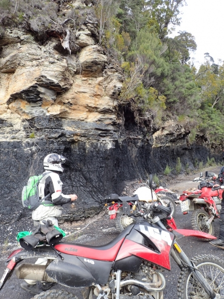 Coal seams on Denniston Track