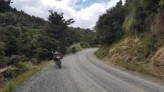 Flat Fern Road