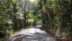 Smooth gravel on Flat Fern Road