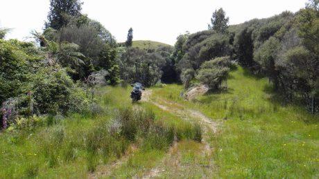 Gayne Road