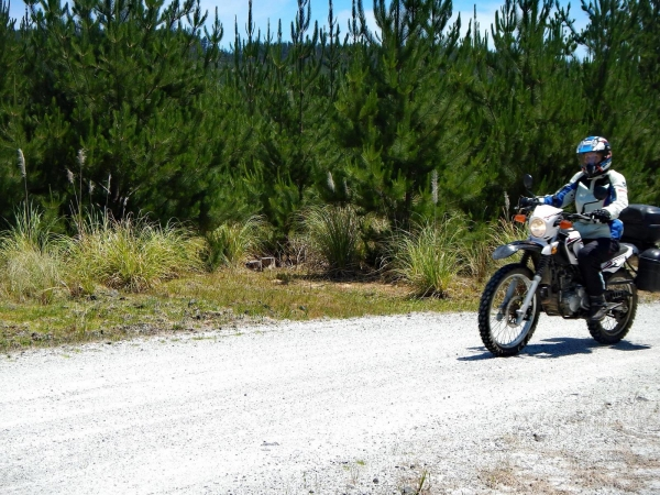 Camilla was riding well on the little Yamaha XT250