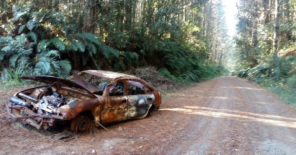 A burnt out car on Hamilton Road