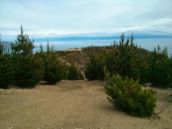 Hori Bay tracks
