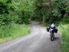 Huia – Roto Road