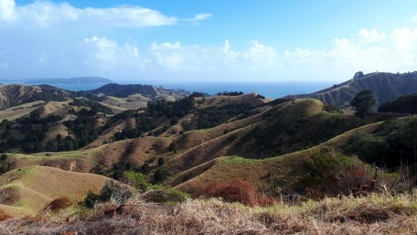 Views from Kaiikanui-Webb Road