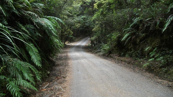 Clements Hill road heading to the Kaimanawa Wall
