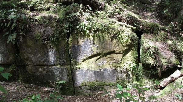The Kaimanawa Wall, man made or natural?