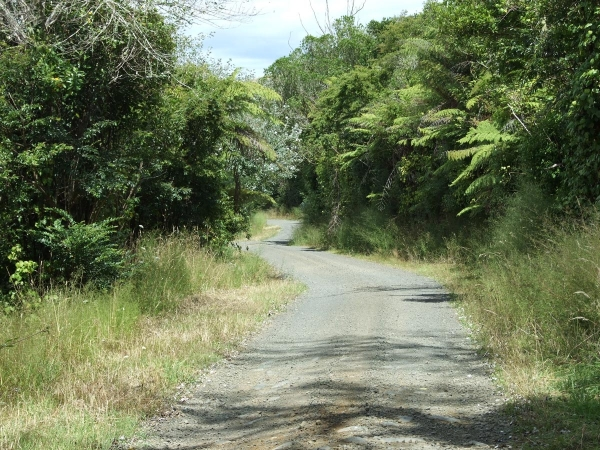Kawhia Road