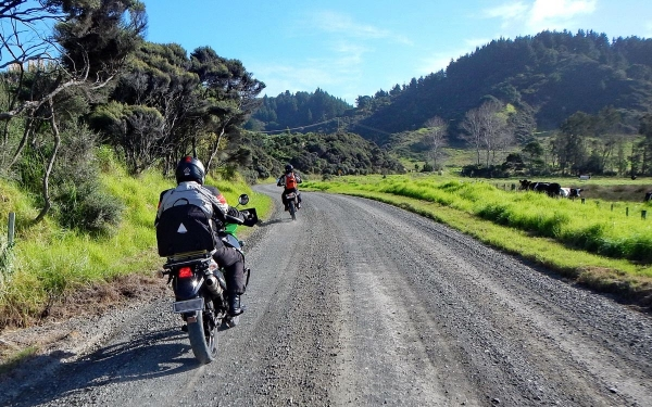 Smooth gravel on Kennedy Bay Road