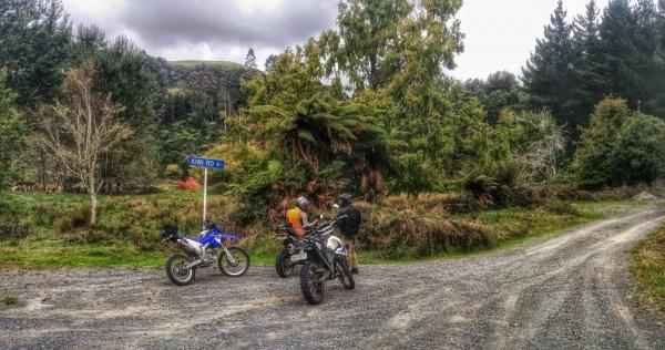 Regrouping on Kiwi Road