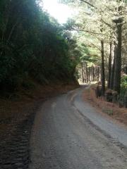 Klondyke Road