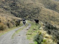 Lees Valley – Okuku Pass