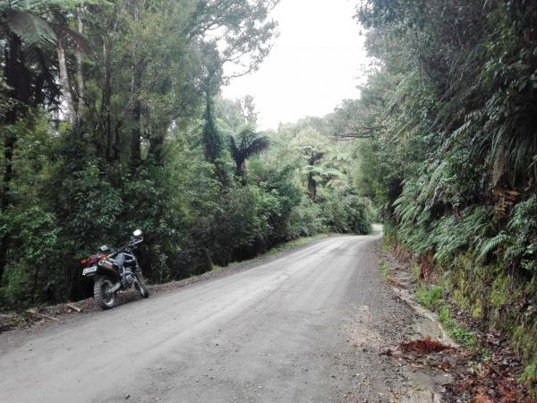 Mangatoi - No 2 Road