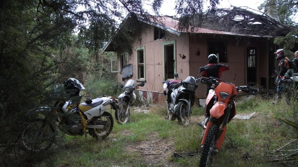 An Abandoned house just off Maungatapu Track
