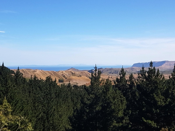 Views from Mohaka Coach Road