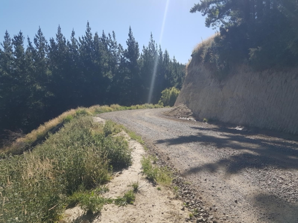 Mohaka Coach Road