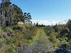 Moir Hill Road