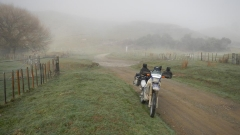 The Motu Road
