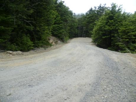 Mt Cheesman Skifield Access Road