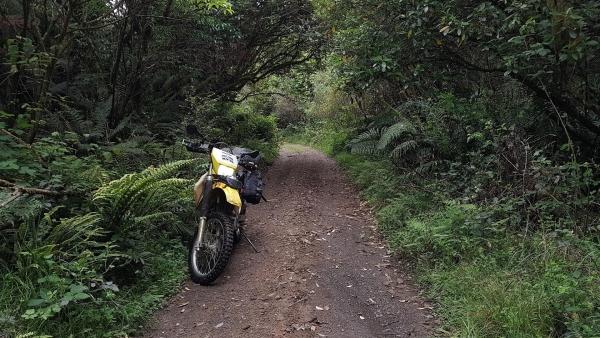 Okauaka Road