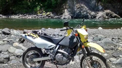 At the Motu River on Otipi Track