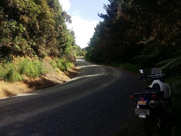 Otorohaea Trig Road