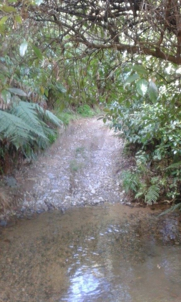 The stream crossing to the back country hut on Owawenga Road