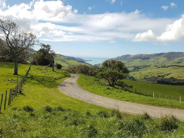 Views from Pettigrews Road