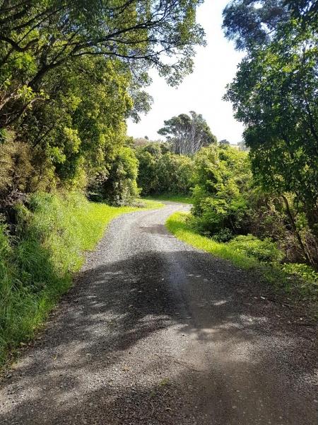 Pettigrews Road