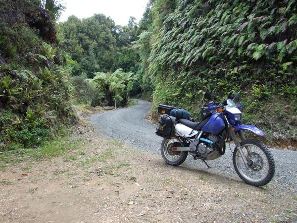 Windy Pomerangai Road