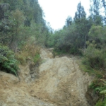 Ruts on Porters Road