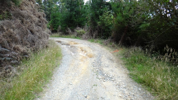 Ruts on Rocky River Road