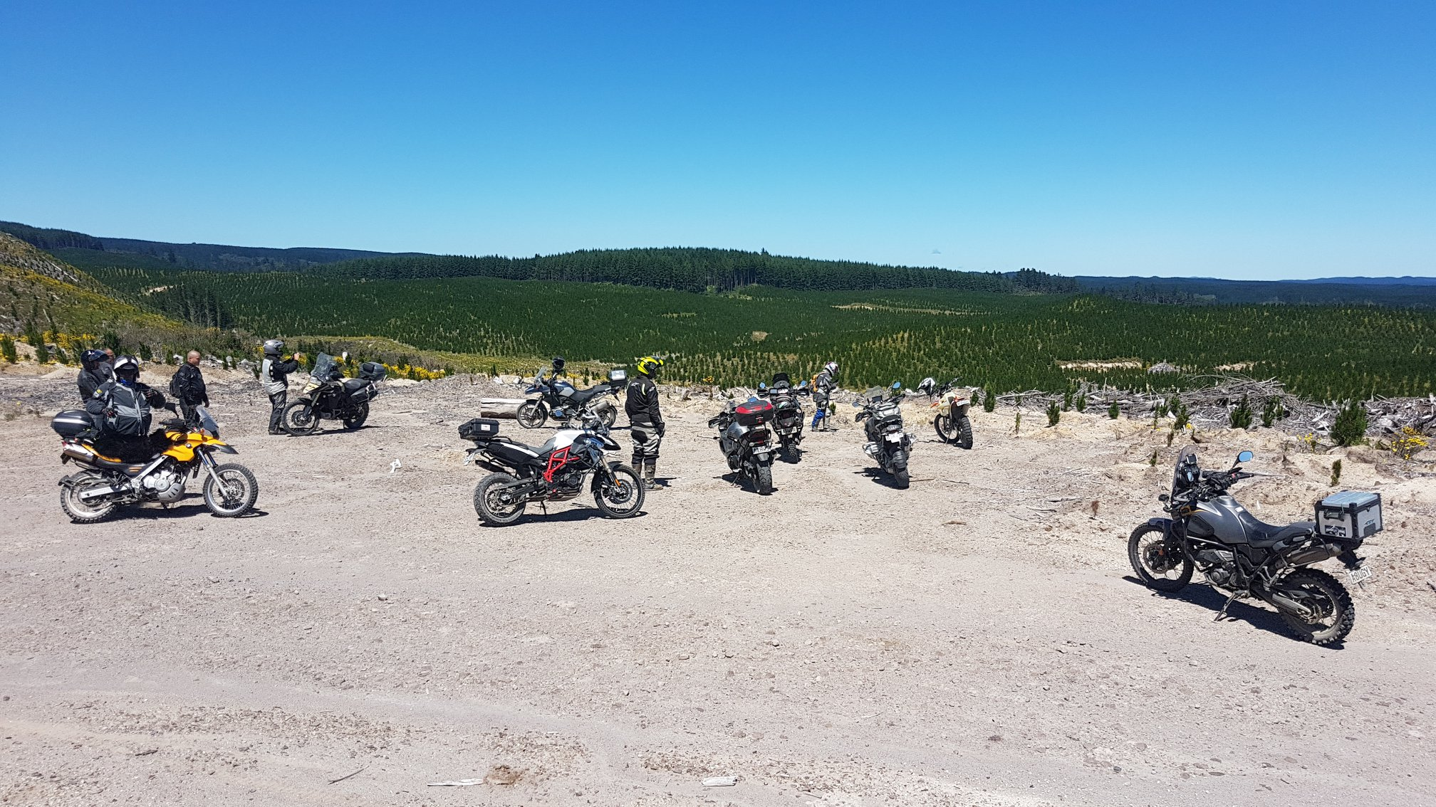 Riders regroup in SF70 Rangitaiki Conservation Area