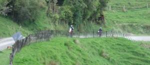 Hauturu Road