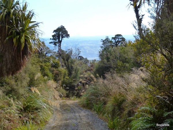 Great views on a clear day from Takapari Road