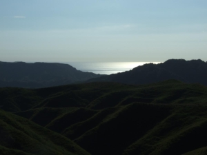The Tasman Sea at dusk from Taumatamaire Road