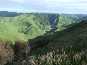 Hidden valleys on Taumatamaire Road