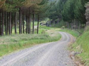Taumatamaire Road