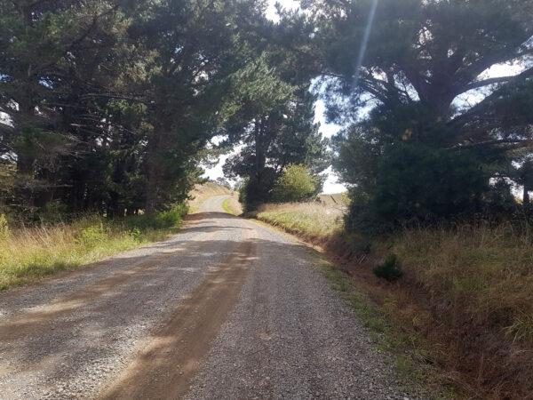 Views from Te Awa - Hiranui Roads