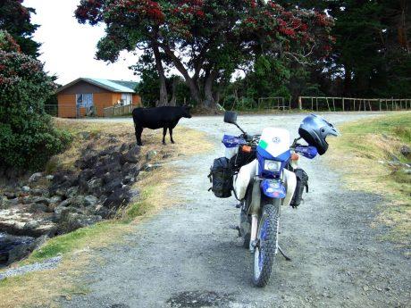 A local in Te Hapua
