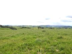 Views from Te Hutewai Road