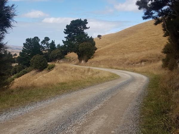 Smooth gravel on Te Uri Road