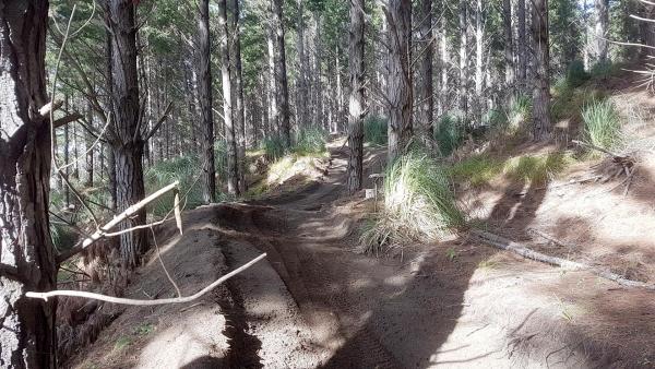 Groomed track at The Sandpit